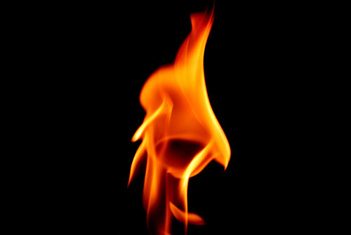 flame-web