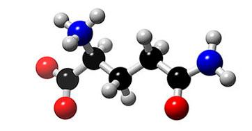 glutamina-estrutura-molecular